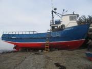 Embarcación multipropósito a la venta (L/M)